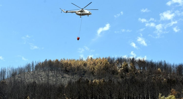 Datça'daki Orman Yangınına Milyonluk Tazminat Davası