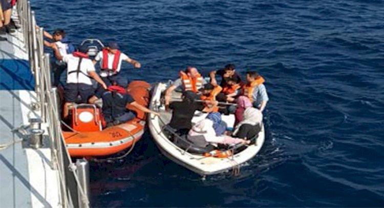 Bodrum'da 10 kaçak Göçmen Yakalandı!